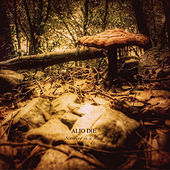 Standing in a Place by Alio Die