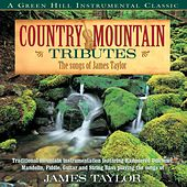 Country Mountain Tributes: The Songs Of James Taylor by Craig Duncan