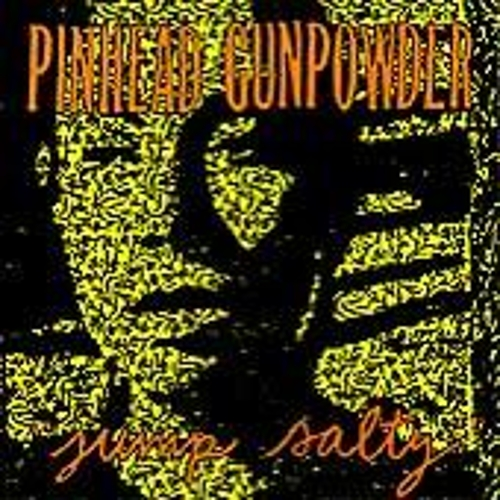 Play & Download Jump Salty by Pinhead Gunpowder | Napster