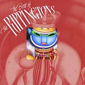 Play & Download The Best Of The Rippingtons by The Rippingtons | Napster