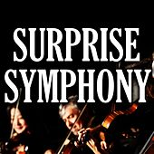 Haydn: Surprise Symphony by Piano Man