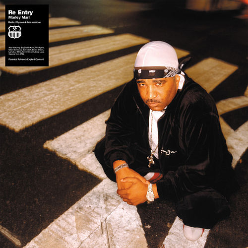 Play & Download Re Entry by Marley Marl | Napster