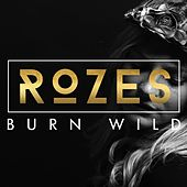 Play & Download Burn Wild by Rozes | Napster