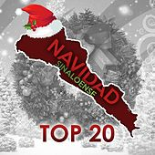 Play & Download Navidad Sinaloense Top 20 by Various Artists | Napster