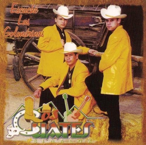 Play & Download Escuché Las Golondrinas by Los Cuates De Sinaloa | Napster
