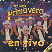 Play & Download En Vivo Para Ti by Conjunto Primavera | Napster