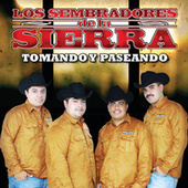 Play & Download Paseando Y Tomando by Los Sembradores De La Sierra | Napster