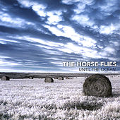 Play & Download Until the Ocean by Horse Flies | Napster