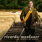 Play & Download Un Camino De Exitos by Ricardo Montaner | Napster