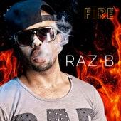 Fire by Raz B