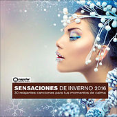 Play & Download Sensaciones de invierno 2016: 30 relajantes canciones para tus momentos de calma by Various Artists | Napster