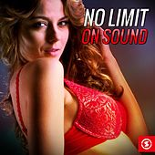 No Limit on Sound by Various Artists