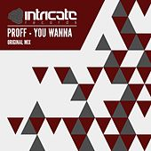 Play & Download You Wanna by Proff | Napster