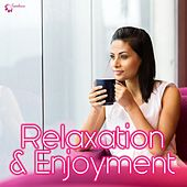 Play & Download Relaxation & Enjoyment by Various Artists | Napster