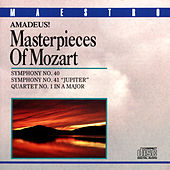 Amadeus! Masterpieces Of Mozart by Various Artists