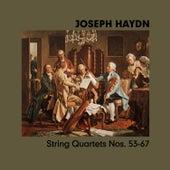 Joseph Haydn, String Quartets Nos. 53-67 by Magyar Quartet