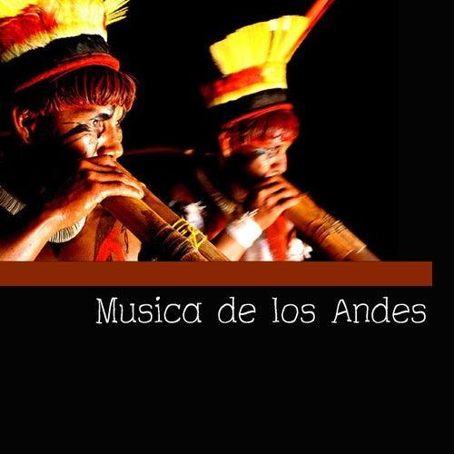 Musica de los Andes de Pachamama