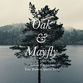 Play & Download Bjørn Morten Christophersen: Oak & Mayfly by Schola Cantorum | Napster