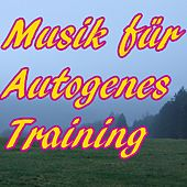 Musik für Autogenes Training by Various Artists