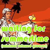 waiting for summertime (Minimal relaxed grooves) by Various Artists