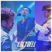 Play & Download Peces 20 Años (En Vivo Teatro Cariola 2015) by Lucybell | Napster