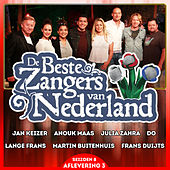De Beste Zangers van Nederland Seizoen 8 (Aflevering 3) by Various Artists