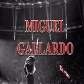 Miguel Gallardo en Vivo by Miguel Gallardo