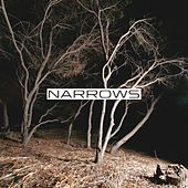 Play & Download Narrows by Narrows | Napster
