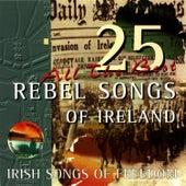25 Rebel Songs Of Ireland by Dermot O'Brien