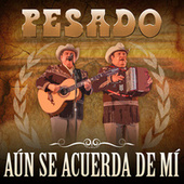 Play & Download Aún Se Acuerda De Mí by Pesado | Napster