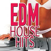 Edm House Hits by Various Artists