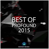 Play & Download Best Of Profound 2015 by Various Artists | Napster