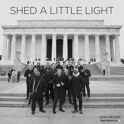 Play & Download Shed a Little Light by Maccabeats | Napster