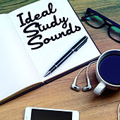 Play & Download Ideal Study Sounds by Various Artists | Napster