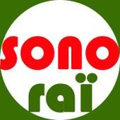 Sono Raï : 30 ans de Raï (1986-2016) von Various Artists