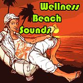 Play & Download Wellness Beach Sounds by Various Artists | Napster