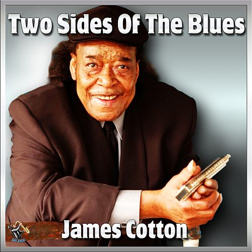 Play & Download Two Sides Of The Blues by James Cotton | Napster