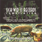 The Hogg In Me by Various Artists