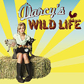 Play & Download Darcy's Wild Life by Various Artists | Napster