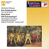 Play & Download Strauss: Ein Heldenleben; Don Juan; Til Eulenspiegel by Various Artists | Napster