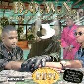 D.O.W.N. by D.O.W.N.