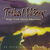 Play & Download Tribal Voices: Music From Native Americans by Various Artists | Napster