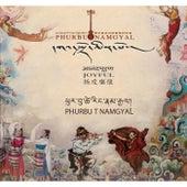 Joyful by Phurbu T. Namgyal