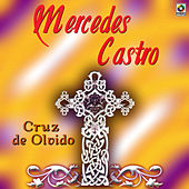Play & Download Cruz De Olvido by Mercedes Castro | Napster