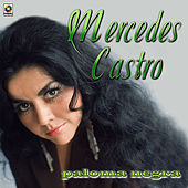 Play & Download Paloma Negra by Mercedes Castro | Napster