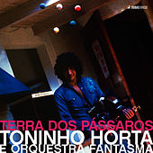 Play & Download Terra dos Pássaros by Toninho Horta | Napster
