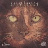 Skinny Cat by Kaiserdisco
