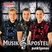 Play & Download Punktgenau by Musikapostel | Napster