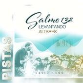 Salmo 132: Levantando Altares (Pistas) by David Lugo