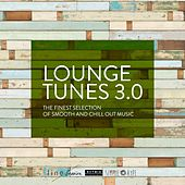 Lounge Tunes 3.0 (By Hotmix Radio) de Various Artists